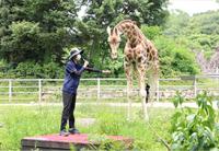 서울대공원 동물원 생태설명회, 교육과 힐링위해 평일오후 제한적 재개