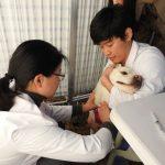 시 보건환경연구원, 찾아가는 반려동물 이동검진센터 운영1